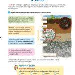 Composizione del terreno/suolo